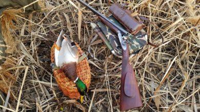 Открытие весеннего сезона охоты