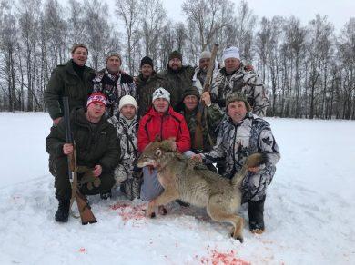 Удачная охота на волка в хозяйствах РязанскогоВОО.